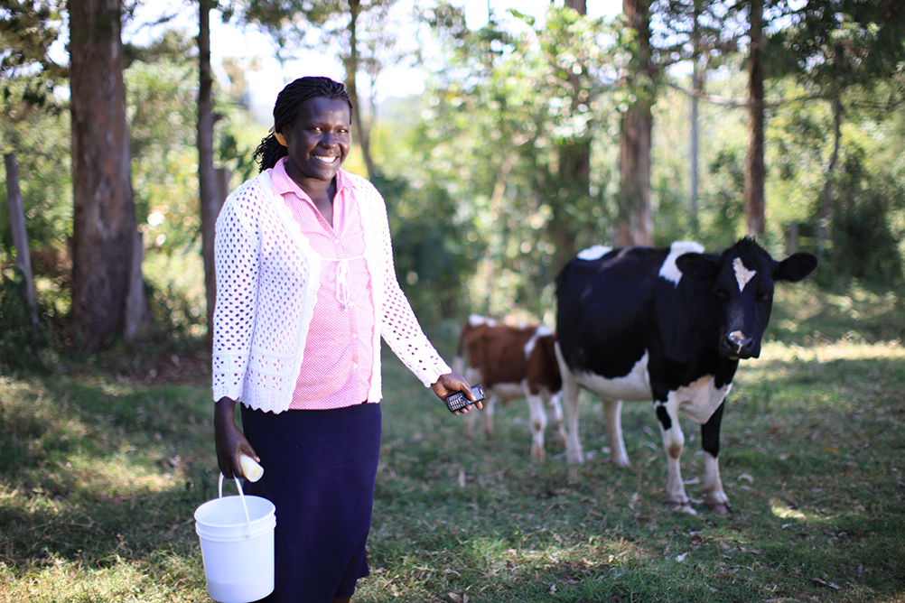 Smallholder Farmer Inputs with T.A.